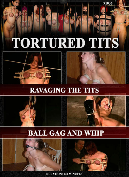 Ravaging The Tits, Ball Gag And Whip